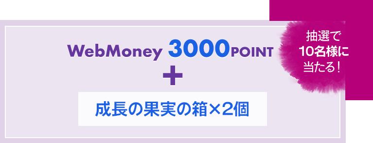 WebMoney3000POINT
