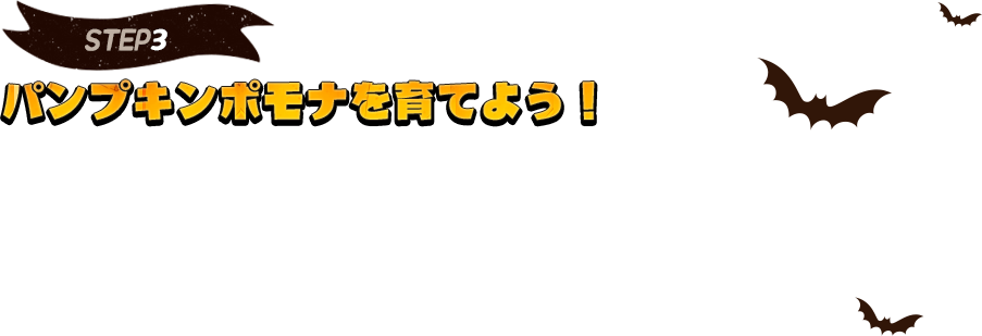 [STEP3]