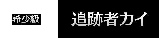 追跡者カイ