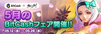 5月のBitCashフェア開催!!