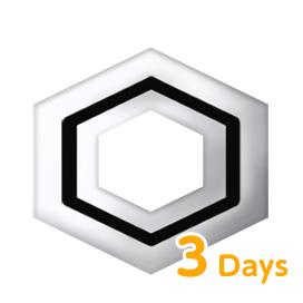 属性抵抗の紋様(3日) 1個