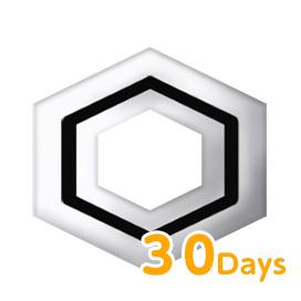 属性抵抗の紋様(30日) 1個
